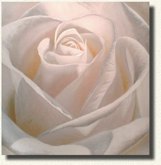 Rembrance - A portrait done in the style of Renoir. Rose paintings of the face of a rose.